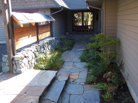 a view of the entry courtyard shortly after planting